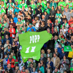 Supporters of VfL Wolfsburg and Popp.